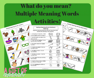 Multiple Meaning Words activities: What do you mean?